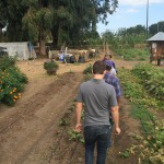 Farmer for a Day - Service Learning Project