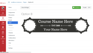 Banner option B