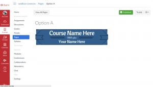 Banner option A